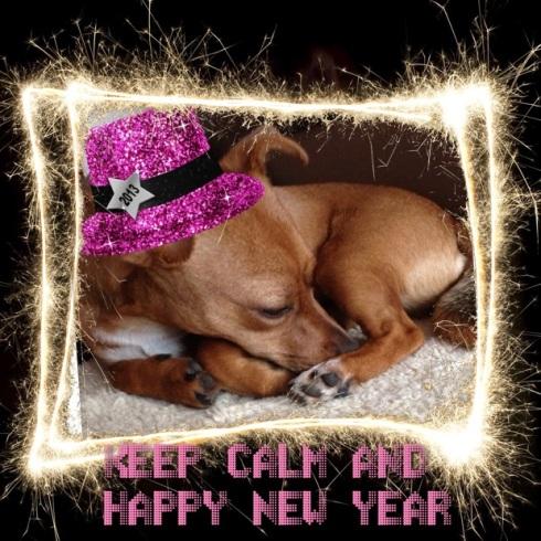 Mali lässt es Neujahr ruhig angehen und wünscht ein gutes 2013.